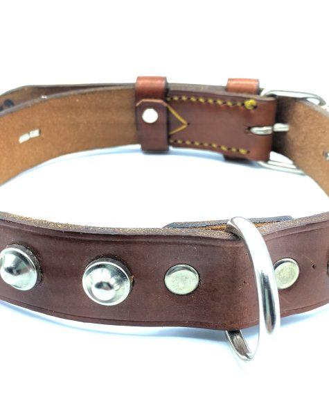 Collar para perro color habana con tachuelas